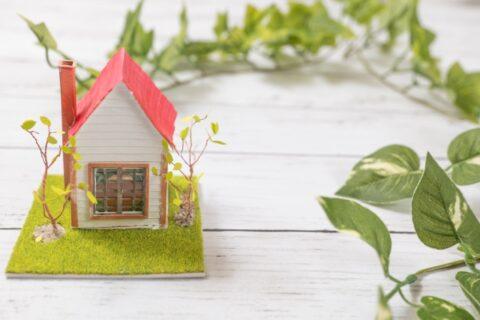 「庭づくりとプランニング」